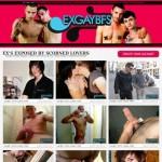 ExGayBFs.com gay porn