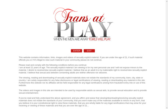 Trans At Play gays access